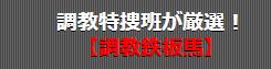 シンクタンク競馬_平日事前情報_調教鉄板馬