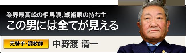 シンクタンク競馬_競馬予想師_中野渡清一