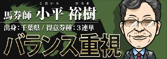的中総選挙-小平祐樹のバランス重視